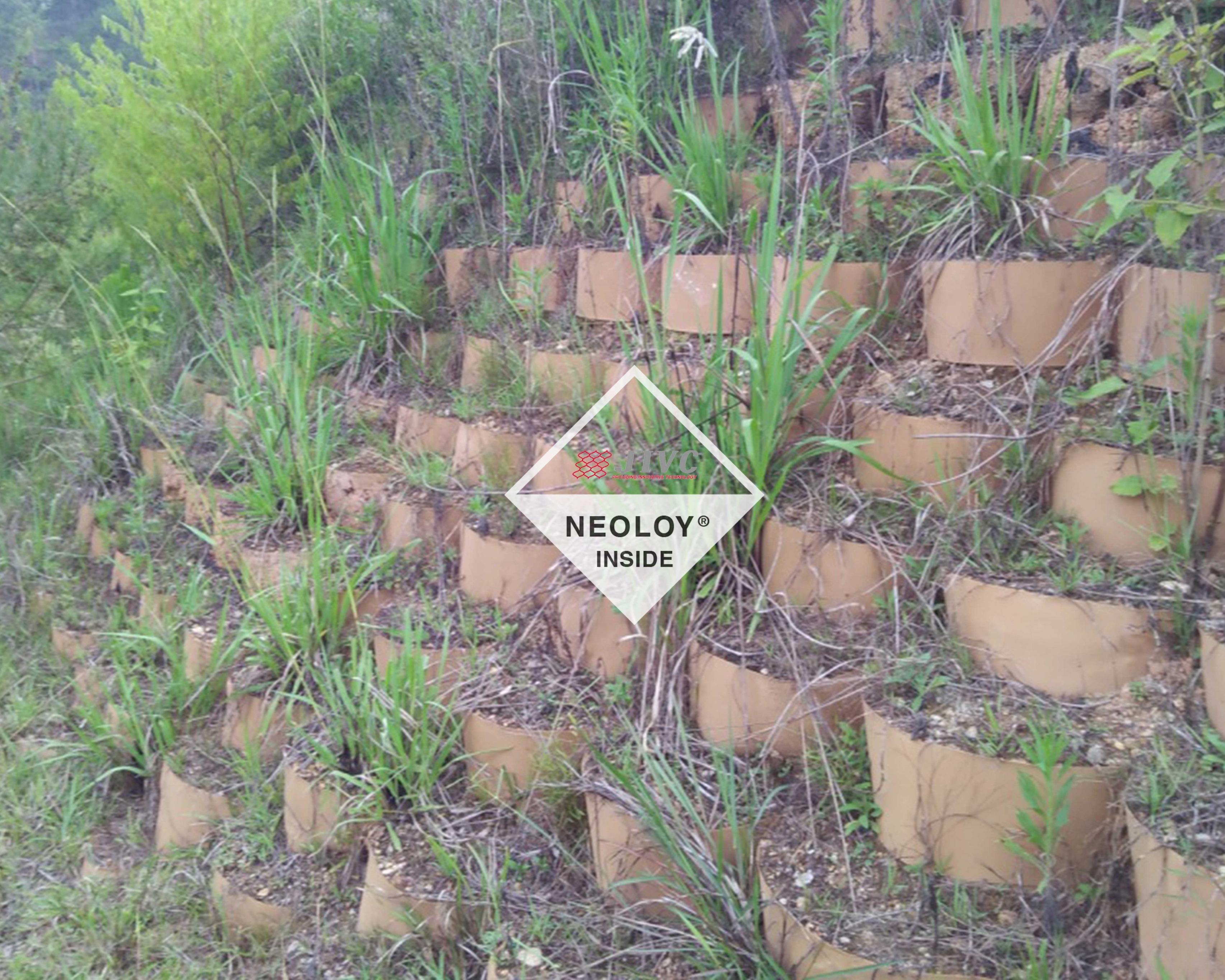 Tổng quan công nghệ Neoweb Neoloy